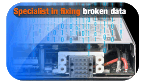 Specialist in fixing broken data